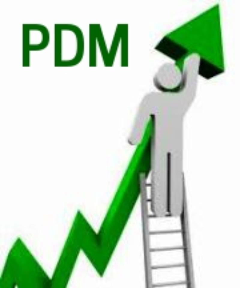 PDM - Piano Di Miglioramento
